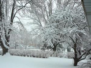 Big Snow December 9