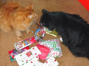 Look at this pile of presents!