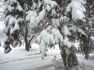 Snow on December 9