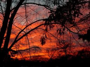 Sunset Nov 28
