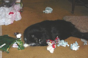 Mom....I didn't make this mess.  The humans did it.
