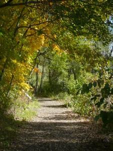 Arboretum 2014 041