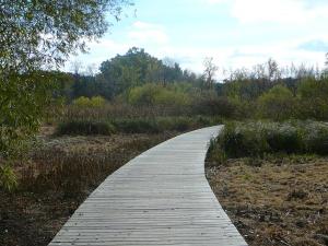 Arboretum 2014 044