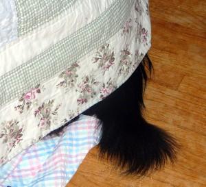 hemingway hides