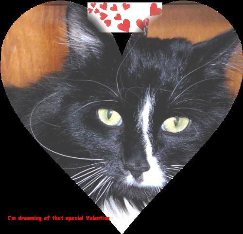Hemingway Valentine