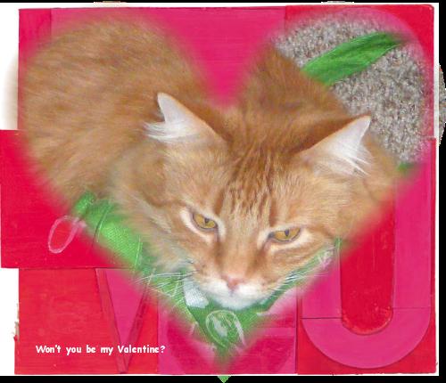 Shakespeare Valentine