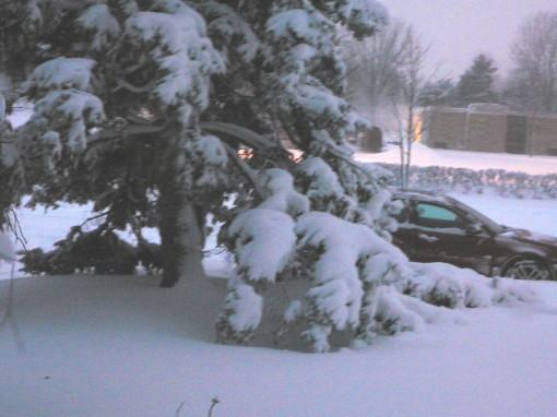 Mom's car waiting to get into the driveway.