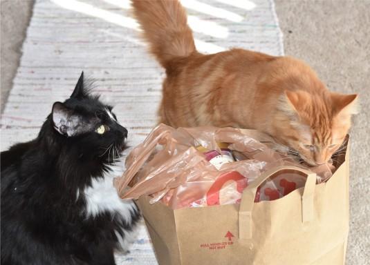 Grocery Inspectors