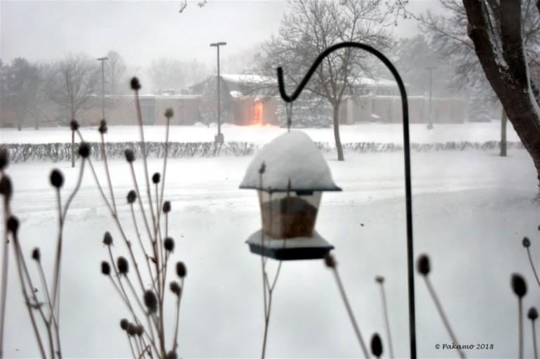 snowstorm1 - Copy