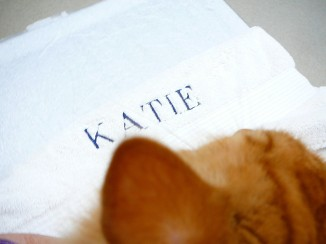 I have to tell Waffles and Katie about this. Obviously this towel belongs to them.